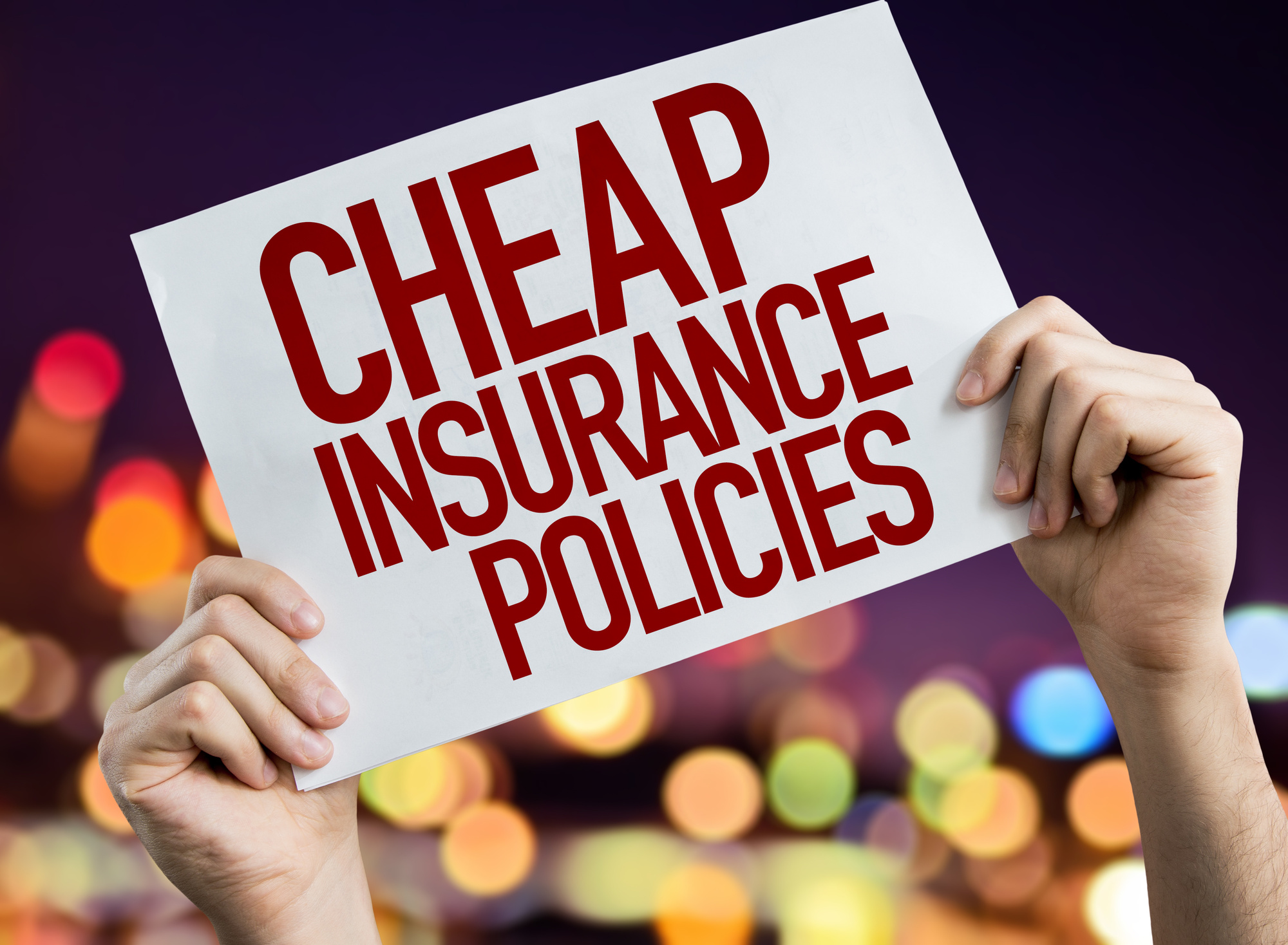 How To Find Cheap Auto Insurance In Florida Sleepy Bears Insurance